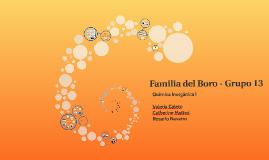 Familia del Boro - Grupo III