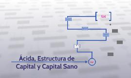 Acida y Estructura de Capital