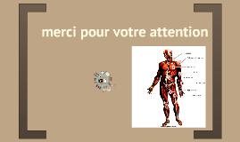 Copy of Copy of Généralités sur les Biomatériaux