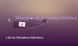 Copy of Músculos de la Cintura Pélvica