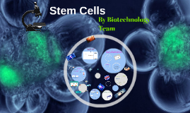 stem cell project part 1