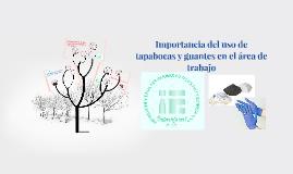 Importancia del uso de tapabocas en el área de trabajo