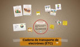 Cadena de transporte de electrónes