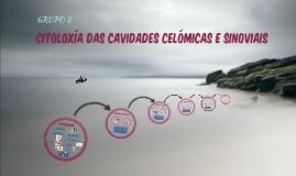 CX CAV CELÓMICAS E SINOVIAIS CON INFO