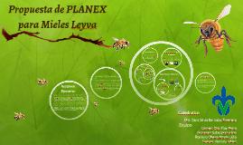 Propuesta de PLANEX de Mieles Leyva