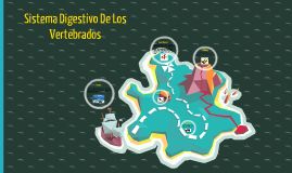 Sistema Digestivo De Los Vertebrados