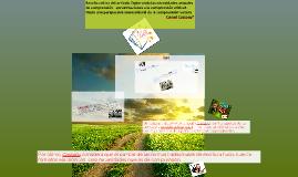 Copy of Copy of Reseña crítica del artículo Explorando las necesidades actua