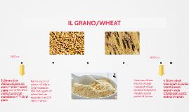 fù l'epoca d'oro dell'esportazione del grano in sicilia in g