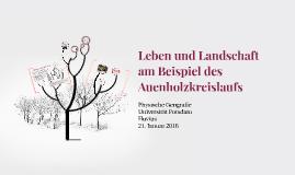 Leben und Landschaft am Beispiel des Auenholzkreislaufs