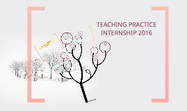 TEACHING PRACTICE INTERNSHIP 2016