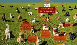 guarderia pets lovers
