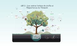 CM 2 : Les autres leviers de trafic et l'importance de l'hum
