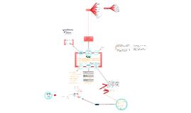 Copy of TCC - Os impactos da Nota Fiscal Eletrônica em uma micro empresa enquadrada no simples nacional: Um estudo de caso na empresa A G Laiun Indústria e Comércio Ltda ME