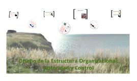 Diseño de la Estructura Organizacional - Cap. 5