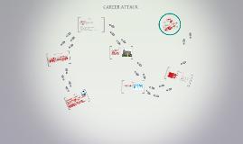 CAREER ATTACK