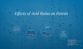 Effects of Acid Rains on Forests