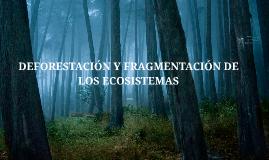DEFORESTACION Y FRAGMENT