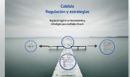 Cabildo. Regulación legal y estrategias