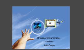 Direcciones web y Dominios