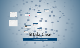 Iittala Case