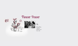 Copy of Flower Power