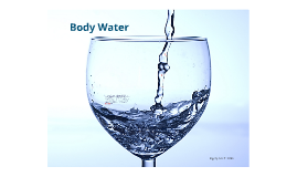 Ch. 1 Body Water