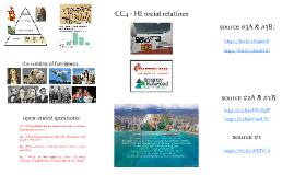 CC4 - HI social relations