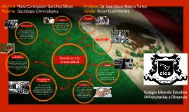 Copy of Fenomenos de Criminalidad