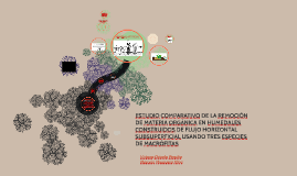 ESTUDIO COMPARATIVO DE LA REMOCIÓN DEMATERIA ORGÁNICA EN HU