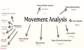 Movement Analysis As PE