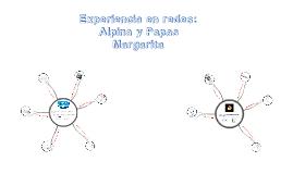Copy of Experiencia en redes: Alpina y Papas Margarita