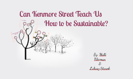 Can Kenmore Street Teach Us