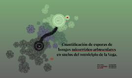 Cuantificacion de esporas