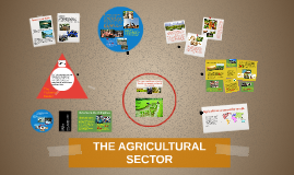 THE AGRICULTURAL SECTOR