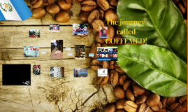 The journey called COFFEMED!