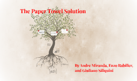 The Paper Towel Solution