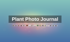 Plant Photo Journal
