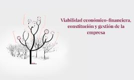 Viabilidad económico-financiera, constitución y gestión de l