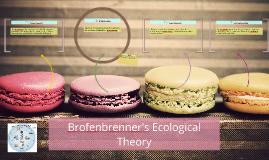 Brofenbrenner's Ecological Theroy