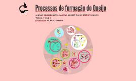 Processos de formação do Queijo