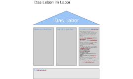 Copy of Das Labor