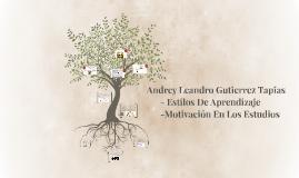 Andrey Leandro Gutierrez       Tapias