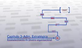 Capítulo 3-Adm. Estratégica