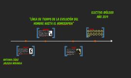 Evolución del hombre hasta el Homosapien (Línea de tiempo)
