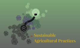 Sustainable Agricultural Practices