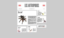 Copy of LOS ARTROPODOS
