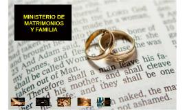 • Promover el modelo bíblico del matrimonio por sobre cualqu