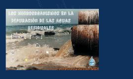 Los Microorganismos En La Depuración De Las Aguas Residuales