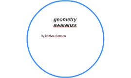 geometry awarenss