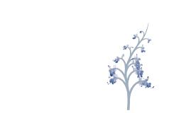Növényi szabályozás és kommunikáció